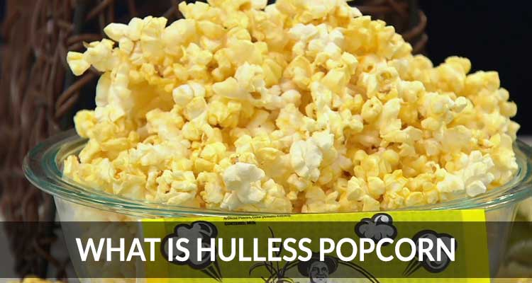 What Is Hulless Popcorn